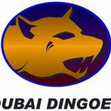 Dubai Dingoes