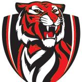 The Big Fitout Dubai Tigers